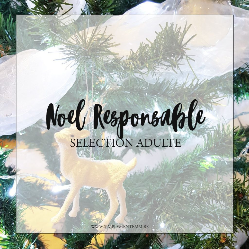 selection noel responsable adulte