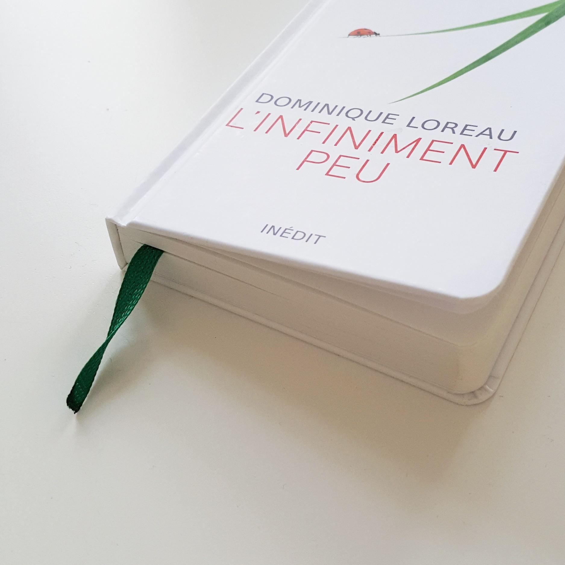 Lecture minimalisme SimplementEmm