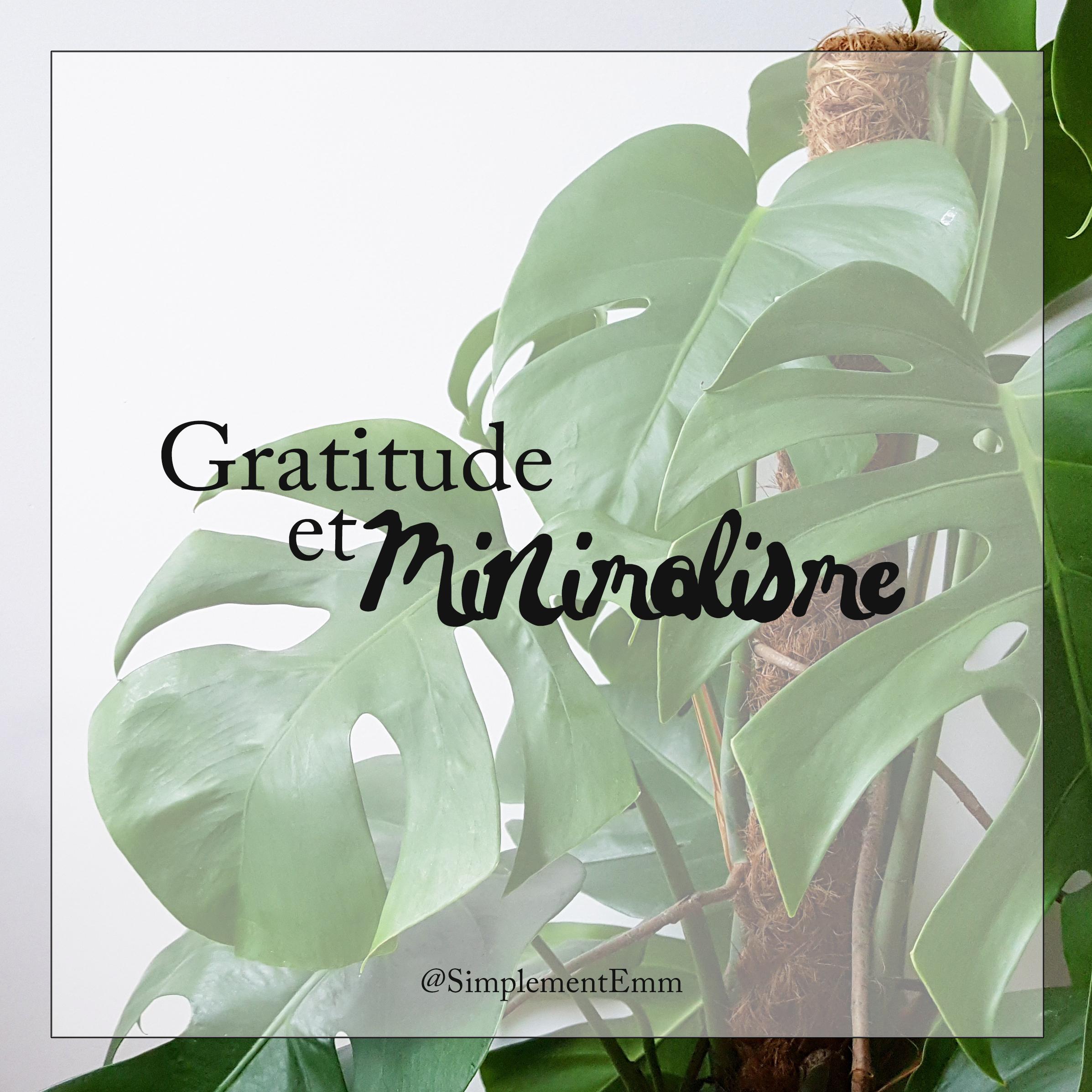 SimplementEmm Minimalisme Gratitude Cadeau Risque