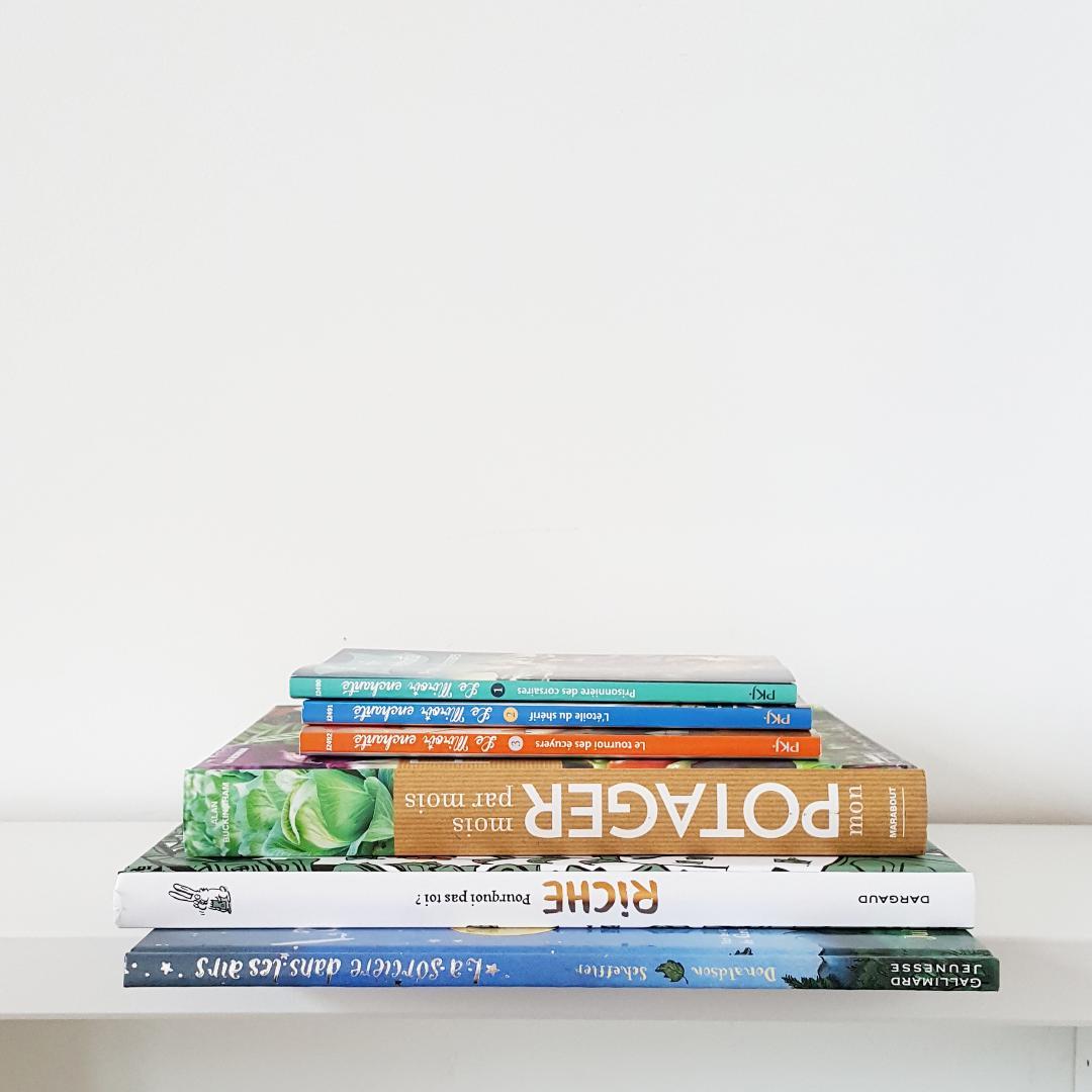 aout 2017 achats livres minimalisme